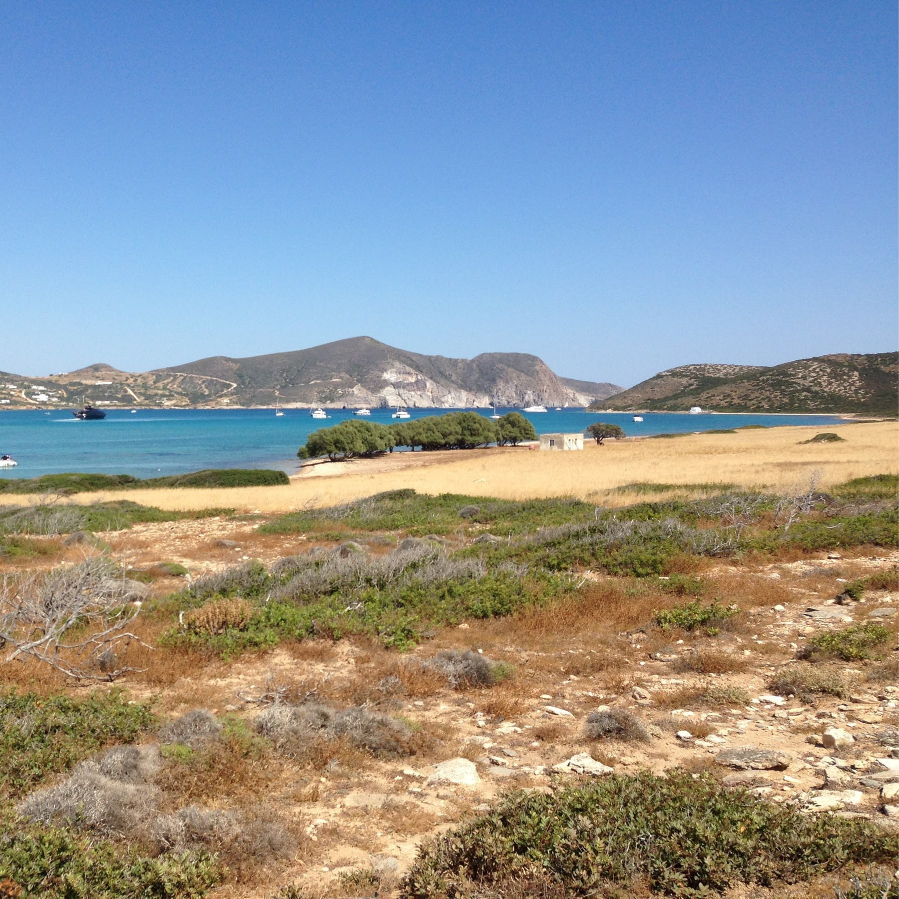 view from Despotiko toward Antiparos